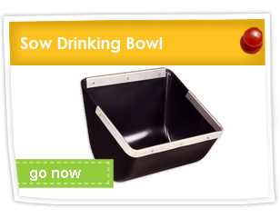 Sow Drinking Bowls